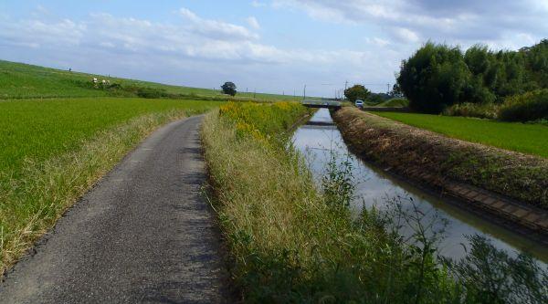 川の流れに(3)_e0086244_14213075.jpg