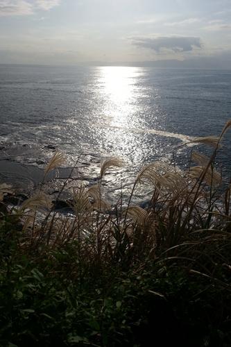 久しぶりに江ノ島でピンホール写真撮影_f0117059_1958824.jpg