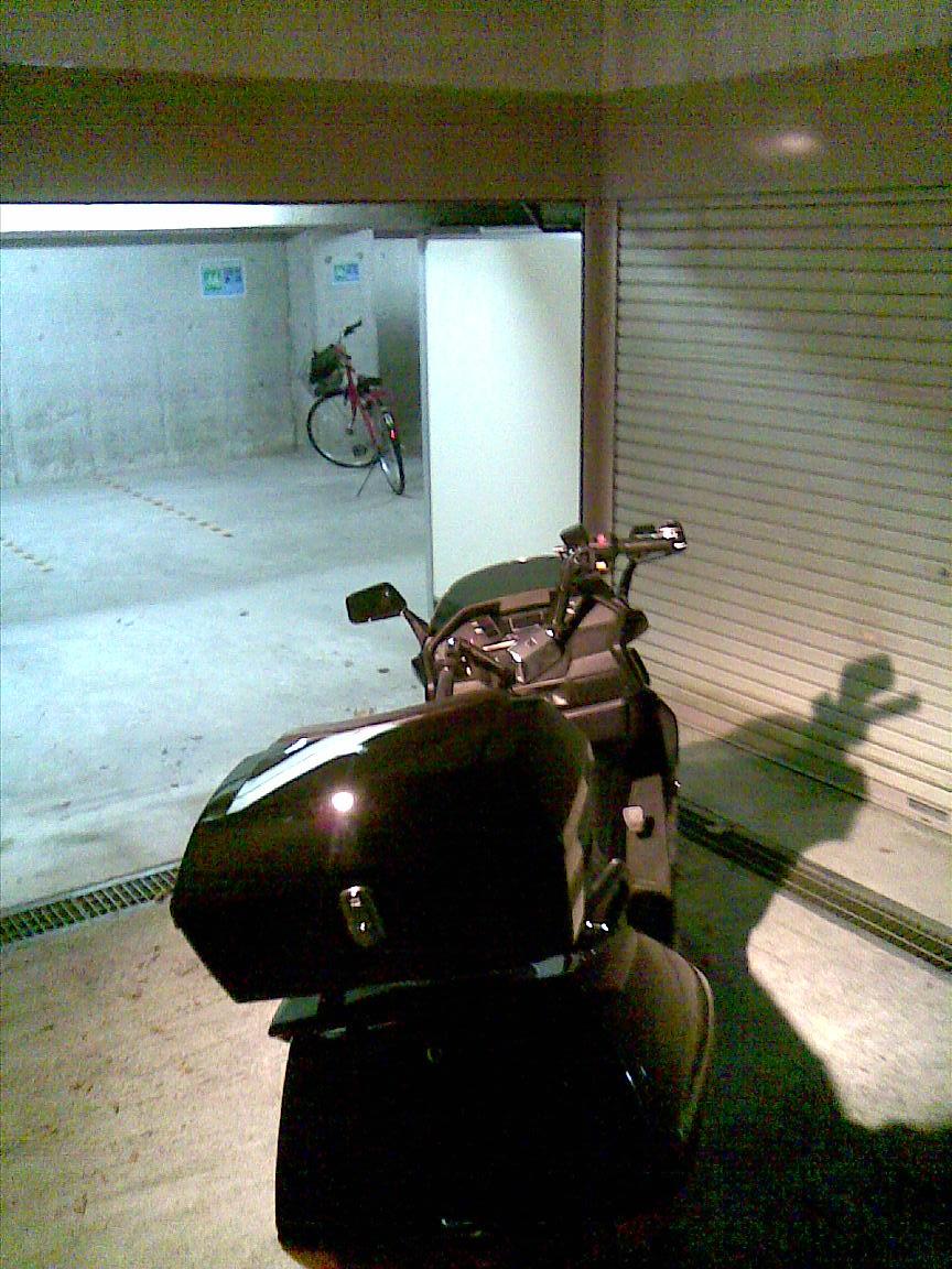 車庫前と駐輪場が明るくなっていた!_d0061678_22473053.jpg