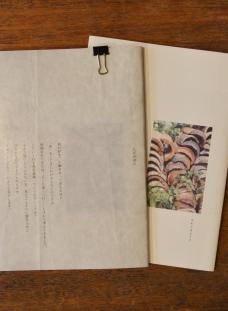 かわしまさんの小冊子のご紹介_d0263815_15484026.jpg