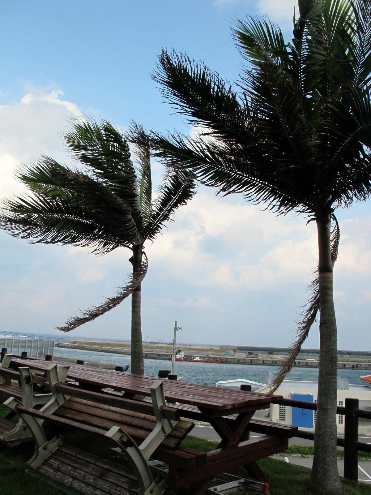 10月15日 風のどなん_b0158746_1155676.jpg