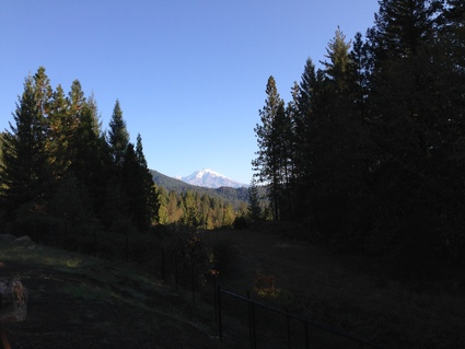 Mt Shastaにいってきた_c0024385_13121993.jpg