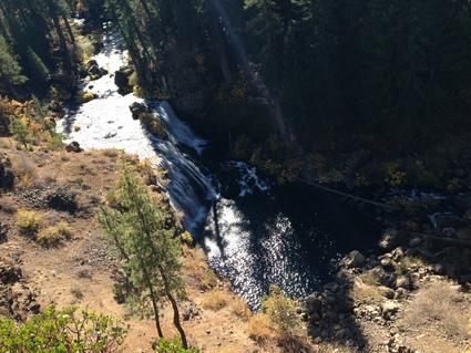 Mt Shastaにいってきた_c0024385_13215494.jpg