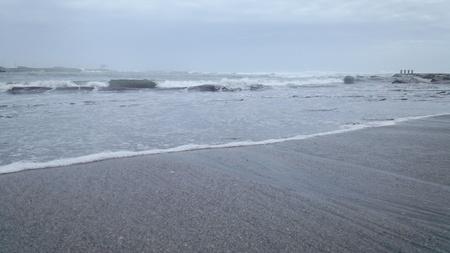 海鳥たちも陸で一休み_e0327621_1832365.jpg