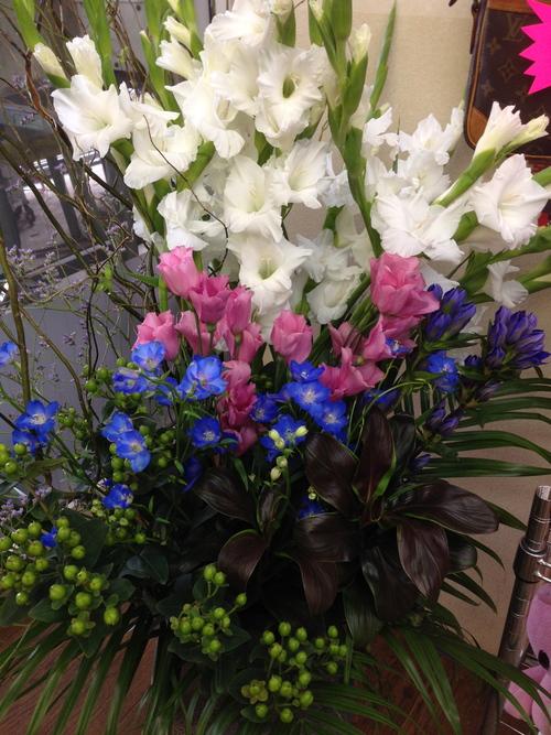 今週のお花とセール情報_a0200423_1252983.jpg