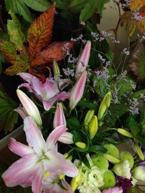 今週のお花とセール情報_a0200423_15462492.jpg