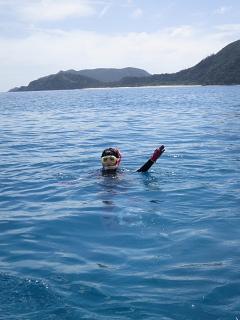 海、ぜんざい、旅を噛みしめる。_d0046025_21445759.jpg