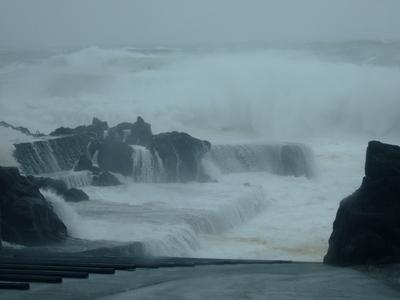 台風26号、久々に強烈でした〜@八丈島_b0189640_10393745.jpg