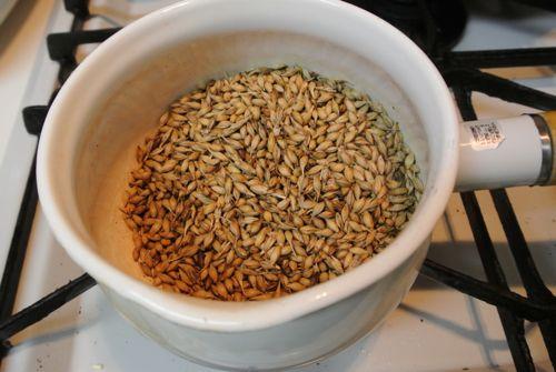 麦芽の乾燥から焙煎_c0063348_2161351.jpg