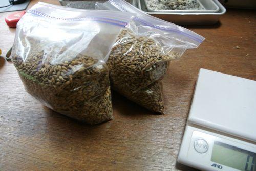 麦芽の乾燥から焙煎_c0063348_2161868.jpg