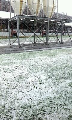 2013 初雪。_a0164408_1122432.jpg