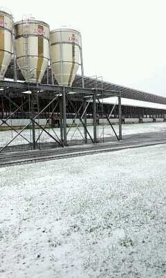 2013 初雪。_a0164408_1132385.jpg