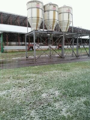 2013 初雪。_a0164408_1145713.jpg