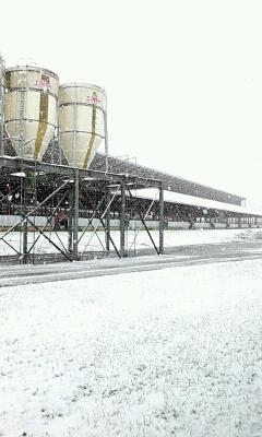 2013 初雪。_a0164408_115413.jpg