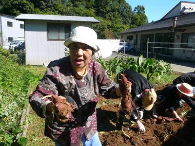 サツマイモ収穫祭(^O^)_a0154110_13273998.jpg