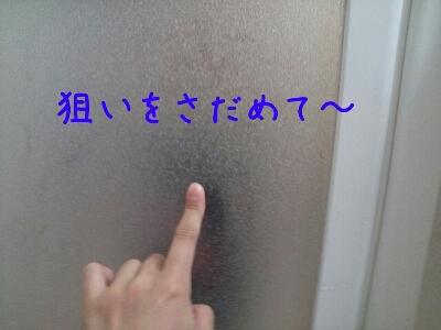 d0170555_17342768.jpg