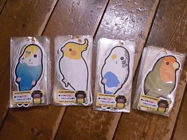 インコと鳥の雑貨展、鳥雑貨たっぷりたっぷりお届け!_d0322493_0263931.jpg