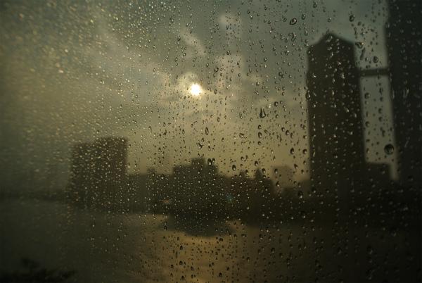 そしてそれは遠い日の夢 <中島 ひろ子>_f0215496_024490.jpg