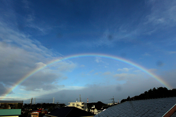 今朝のワンショット/大きな虹が/台風後の蓮池/川は増水_b0024798_10254287.jpg