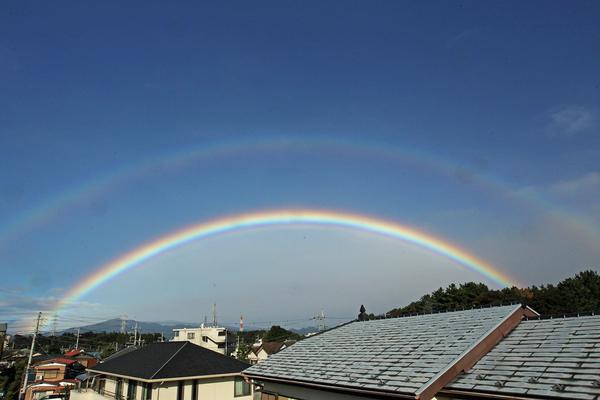 今朝のワンショット/大きな虹が/台風後の蓮池/川は増水_b0024798_10304217.jpg
