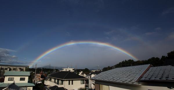 今朝のワンショット/大きな虹が/台風後の蓮池/川は増水_b0024798_10314768.jpg