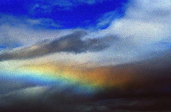 今朝のワンショット/大きな虹が/台風後の蓮池/川は増水_b0024798_10341271.jpg