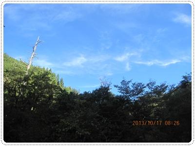 f0193521_8261062.jpg