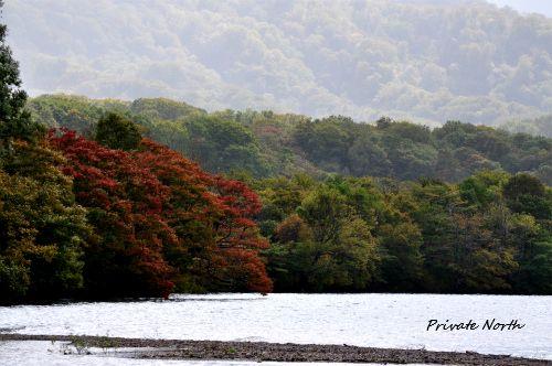 十和田湖 2_d0261148_12408100.jpg