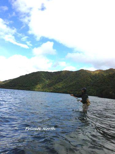 十和田湖 2_d0261148_1323349.jpg