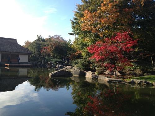 日本庭園の紅葉_b0300862_21201434.jpg