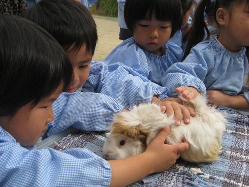 ふれあい動物園_c0107515_1972013.jpg