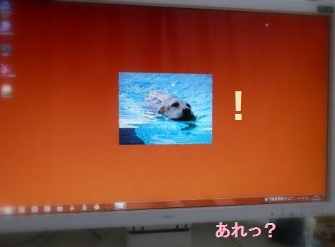 b0226221_18203065.jpg