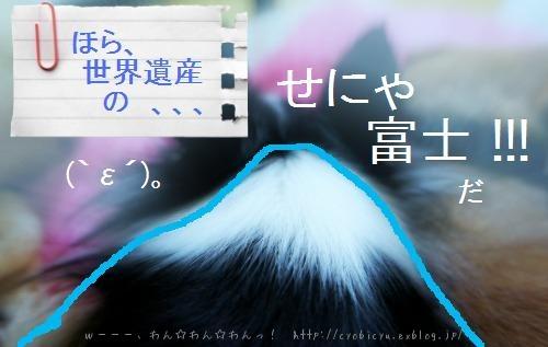 b0112758_20302383.jpg