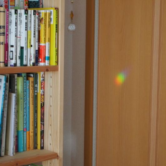サンキャッチャーの虹色の玉_a0292194_10462373.jpg