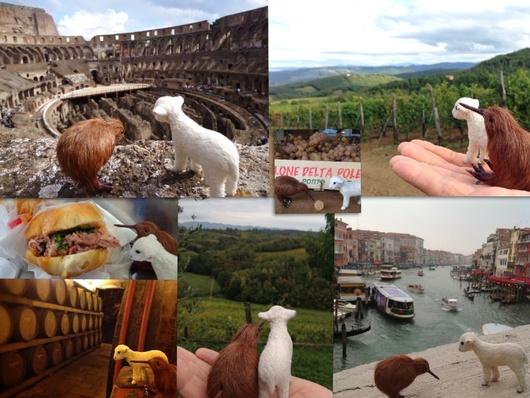 イタリアへ行って参りました!_e0320096_1520534.jpg