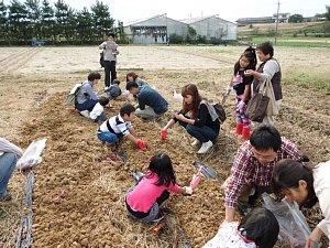 さつまいも収穫体験_d0120421_12411210.jpg