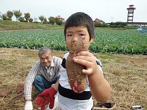 さつまいも収穫体験_d0120421_12412510.jpg