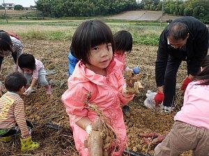 さつまいも収穫体験_d0120421_12413597.jpg