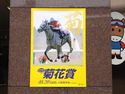 ポスター文字「菊」 : JRA様 第74回菊花賞_c0141944_1642467.jpg