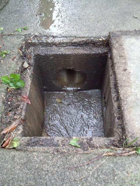 雨水調査等_f0115152_1710661.jpg