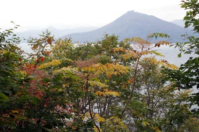 滝と紅葉めぐり・・3 野鳥の森 _d0162994_812354.jpg