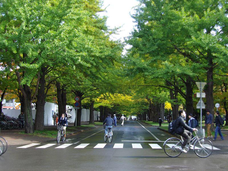 安定した秋の天気へ_c0025115_19201759.jpg