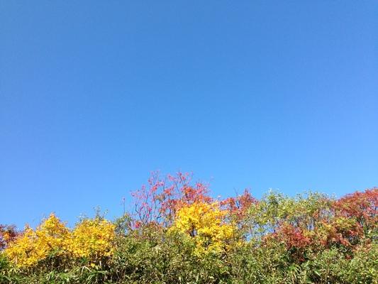 秋の栗駒山登山と 絶景かな栗駒山荘 その2_c0261447_2182355.jpg