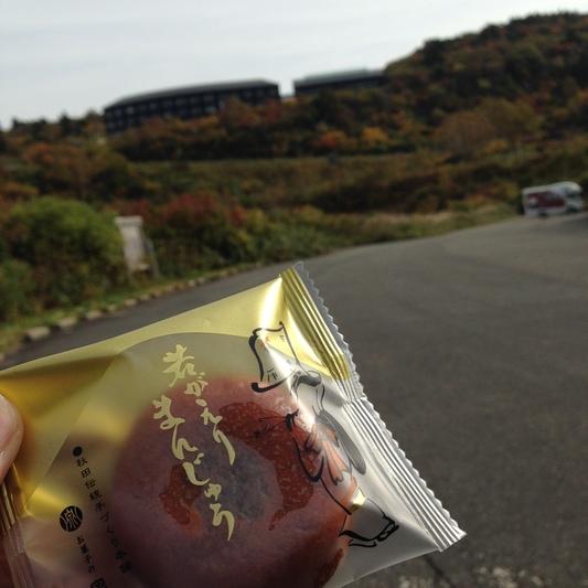 秋の栗駒山登山と 絶景かな栗駒山荘 その2_c0261447_223293.jpg