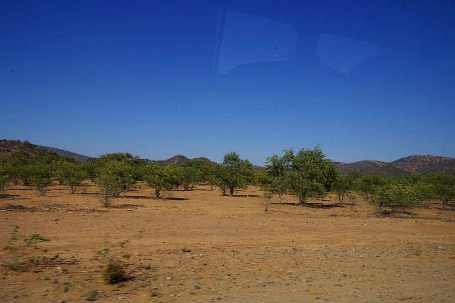 ナミビアの旅(31) オプウォのロッジからヒンバ族の村へ_c0011649_13521981.jpg