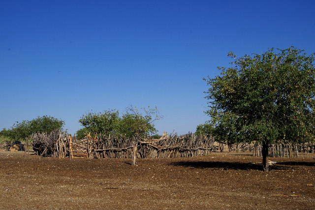 ナミビアの旅(31) オプウォのロッジからヒンバ族の村へ_c0011649_13552176.jpg