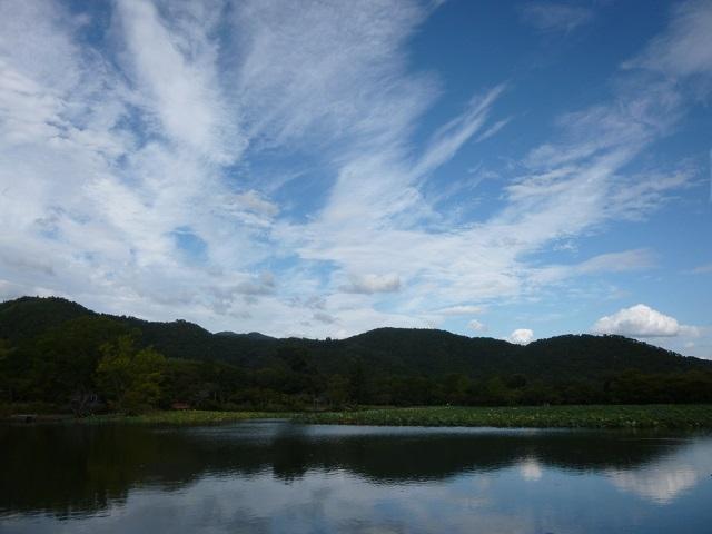 京都   (嵐山    嵯峨野 大沢の池  編)_d0105967_2002426.jpg