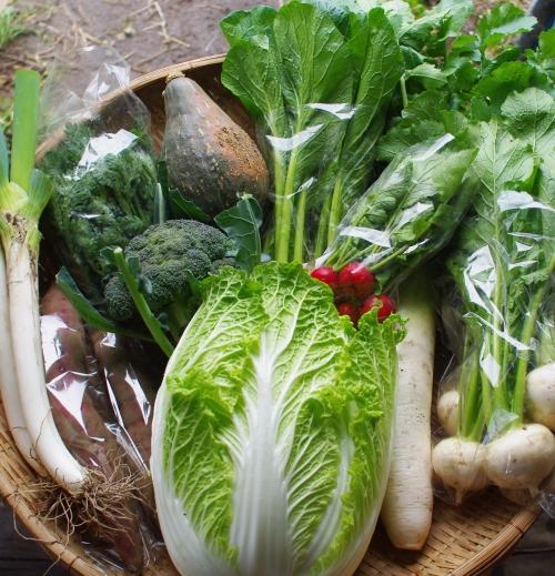 今週の野菜セット(10/22~10/26着)_c0110869_15255366.jpg