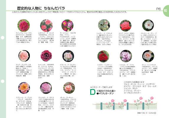 ガーデン企画書 komaba rose society_f0172313_183972.jpg