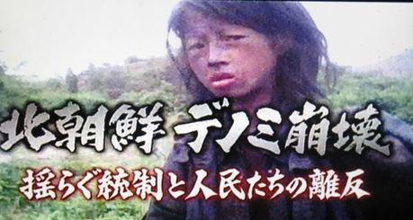 北朝鮮vs南トンスルランド:やはり北朝鮮「ワン・ジェサン芸術団」の方が上ですナ!_e0171614_16452414.jpg